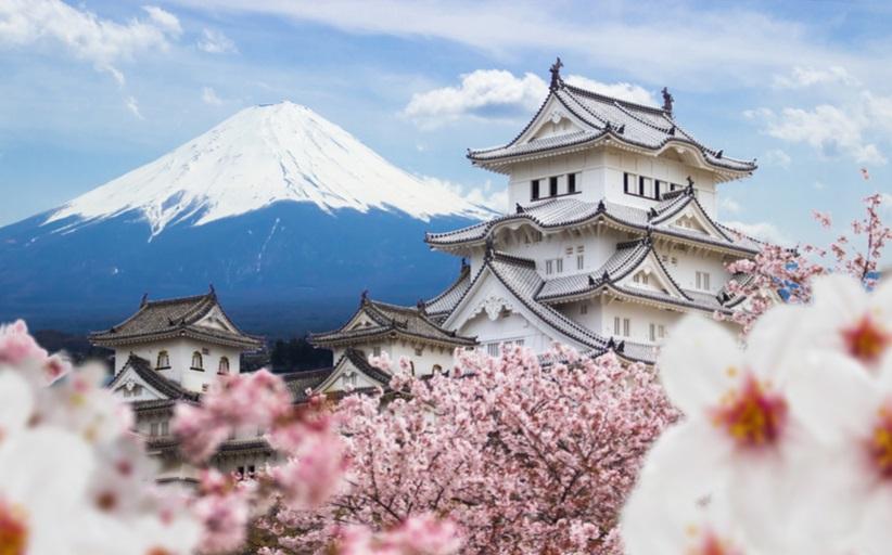 Marktmonitor: Japan auf einen Blick