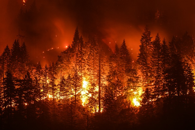 U.S. Forest Service crews get to wildfires with help from BCD Travel